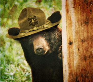 US-Wildlife-Bear-Officer-ROH