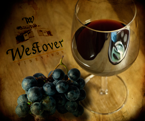 Westover-Wine-Grapes---ROH