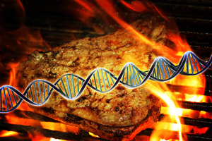 Steak-and-DNA-ROH